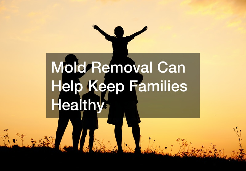 Mold Removal Can Help Keep Families Healthy