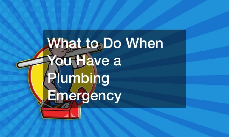 What to Do When You Have a Plumbing Emergency