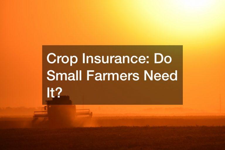 Crop Insurance: Do Small Farmers Need It?